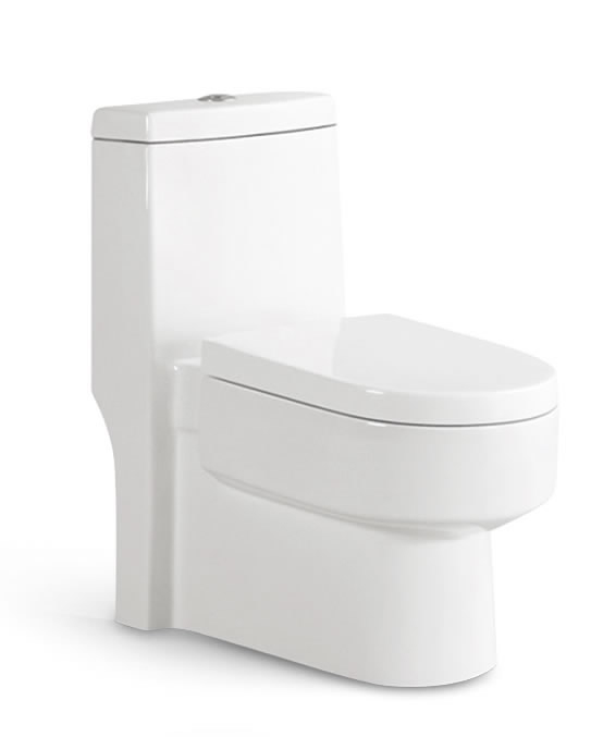 One Piece Toilet T9007