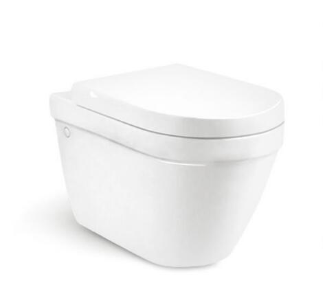 Wall Hung Toilet T8207
