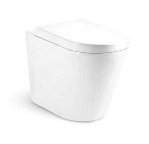 Wall Hung Toilet T8215